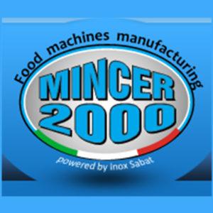 Mincer 2000